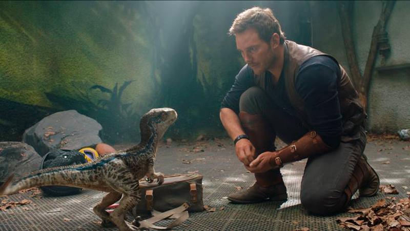 Adestramento de um Velociraptor filhote.
