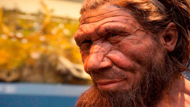 Reconstrução de um Homem de Neandertal pelo Museu de História Natural.